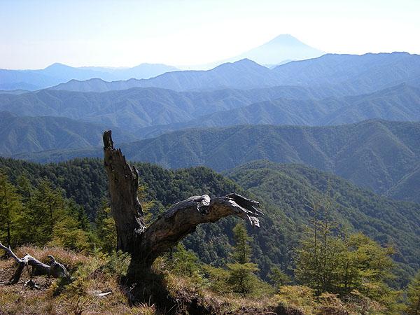090920小雲取からの富士