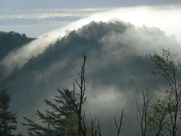 090922笠取山の雲