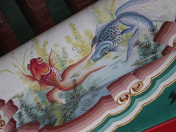 100101頤和園金魚