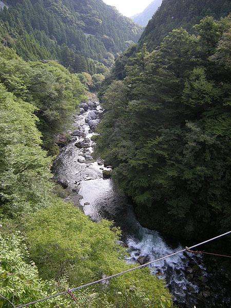100919シダクラ橋から多摩川本流