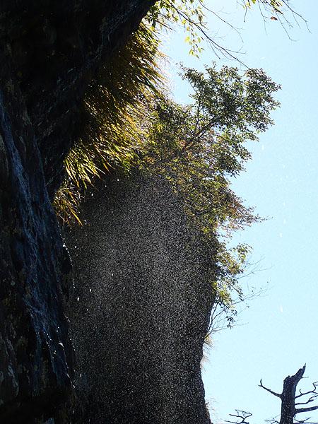 101011三ッ峠岩壁から水が降る