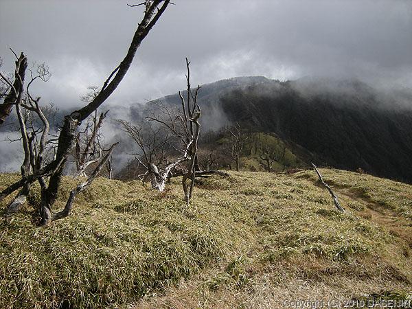 101121丹沢・蛭ヶ岳からの下り始め