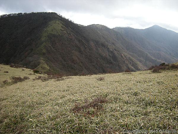 101121丹沢・丹沢山への稜線