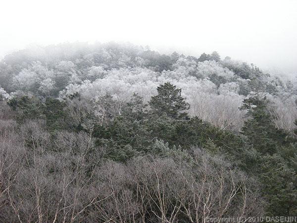 101218登山口から霧氷