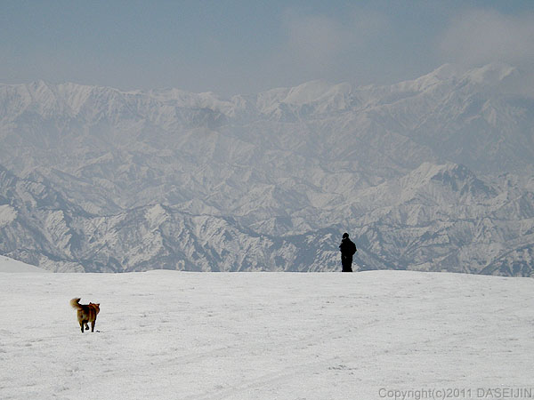 110417守門岳・犬の散歩