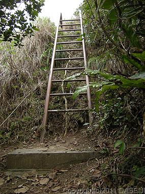110503小笠原母島南崎小富士のはしご