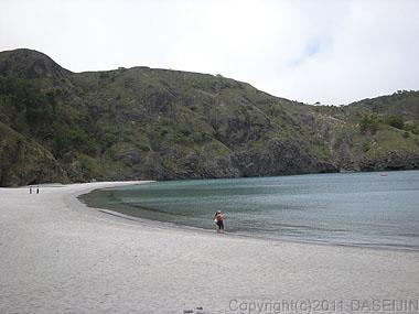 110507父島小港海岸でひと泳ぎ