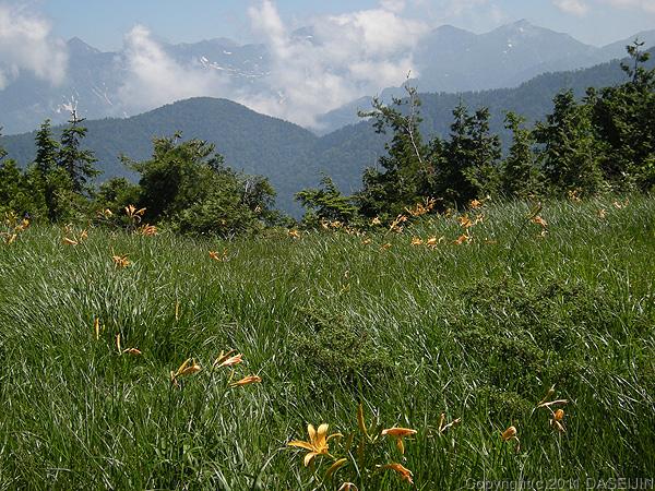 110716太郎平への登山道1900mを越えると草原