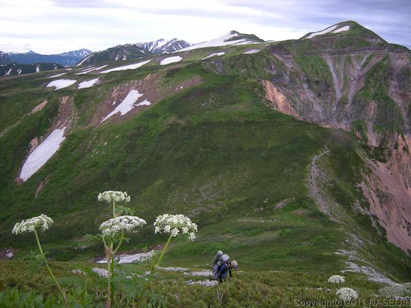 110718獅子岳の急登から五色ヶ原