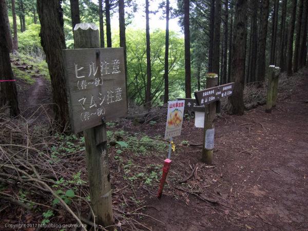170527焼山から姫次へ、ヒルに注意