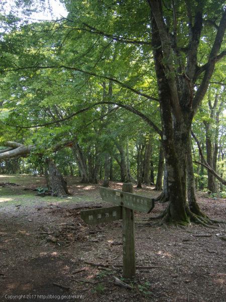 170708 倉戸山山頂