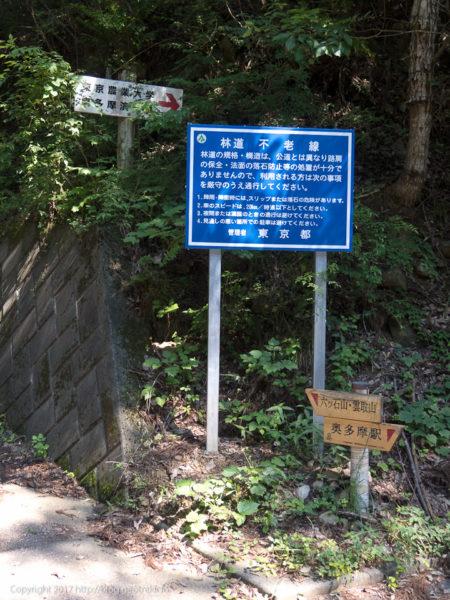 170708 石尾根への林道
