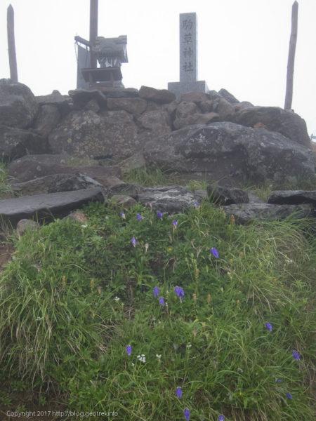 170730 駒草神社