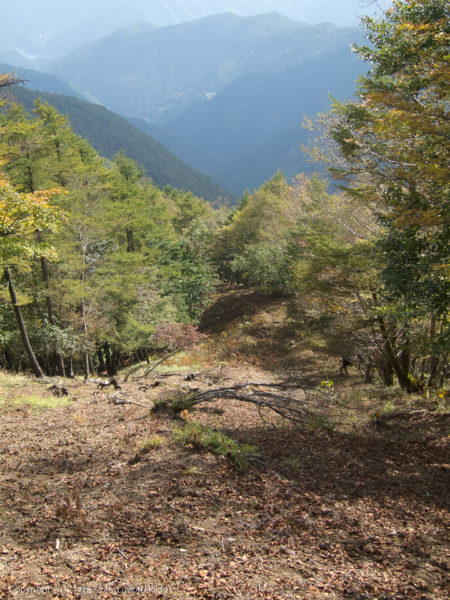 171007高丸山の斜面