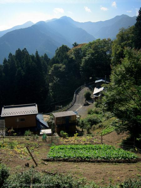 171007 石尾根登山口へ道路を登る