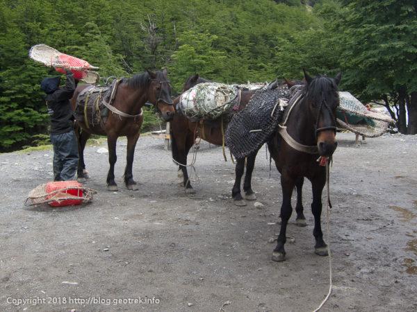 171118 チレノの荷揚げの馬