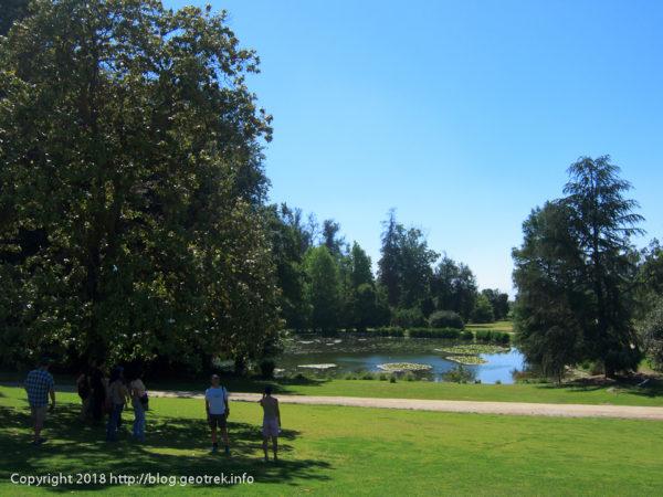 171125 コンチャイトロの庭園