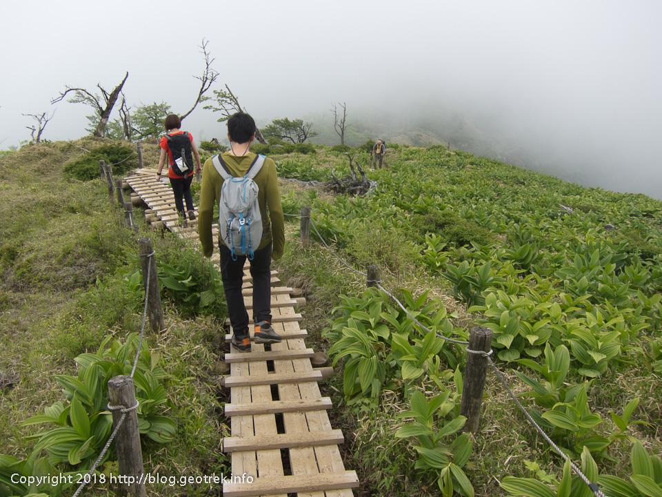 180526 蛭ヶ岳から丹沢山へ向かう