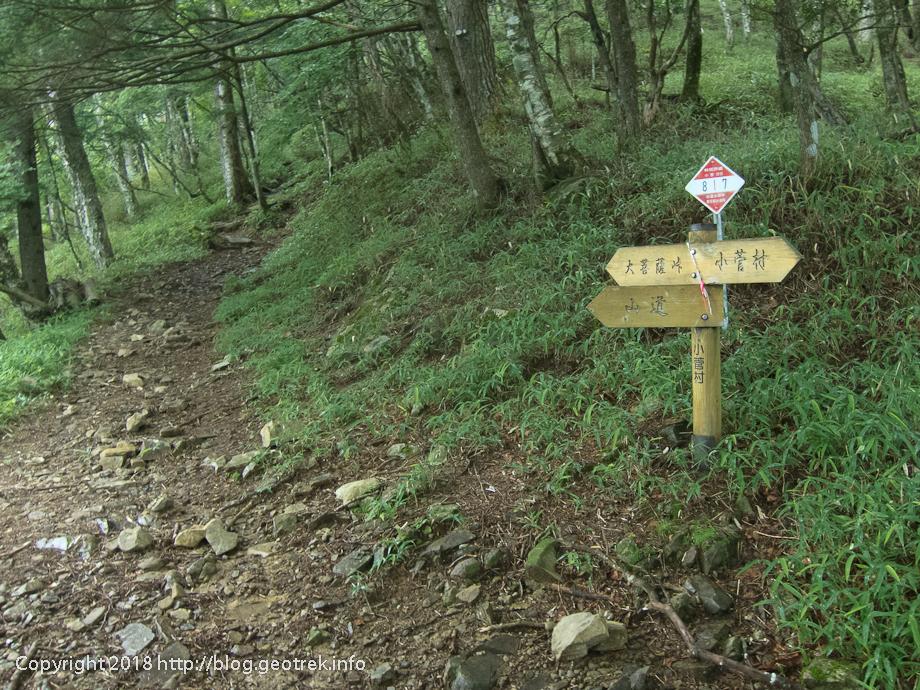 18021 登山道にのる