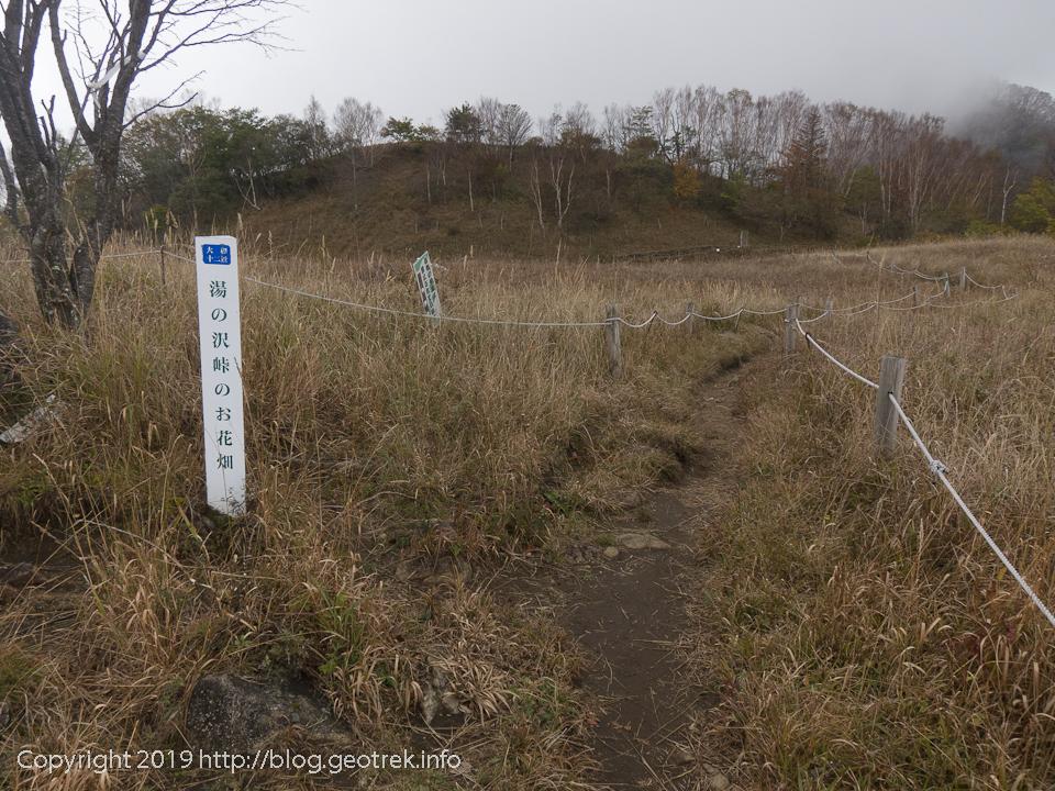 181020 湯ノ沢峠のお花畑