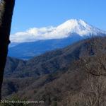丹沢から山中湖へ走り抜ける~西丹沢・甲相国境(1)