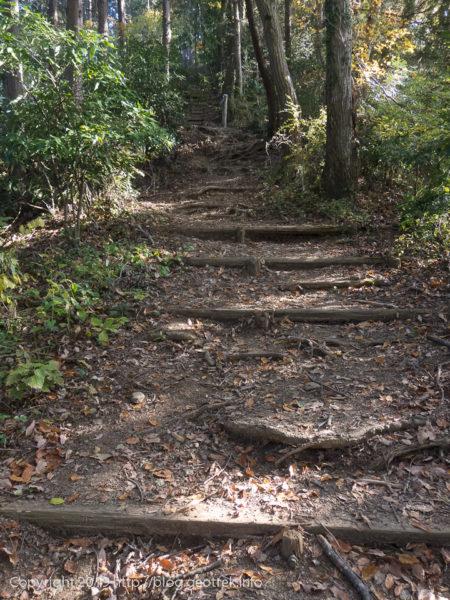 181127 南高尾の登り