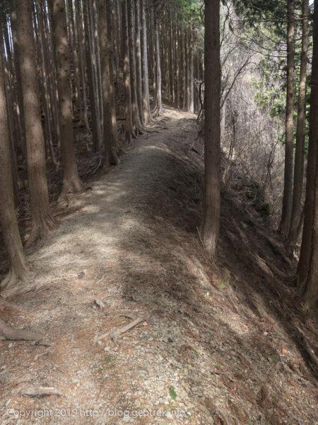 権次峠への登り