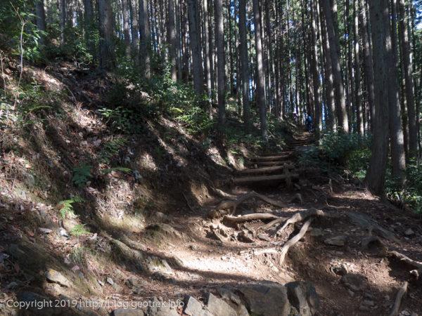 惣岳山への登り