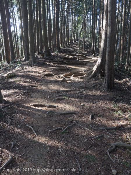 惣岳山へ関東ふれあいの道