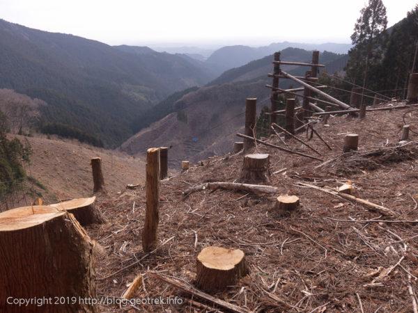 岩茸石山へ、皆伐の跡