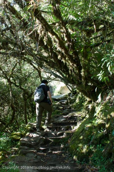 190501 歩きやすいマチュピチュ山登山道