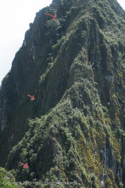 190501 ワイナピチュの登山道