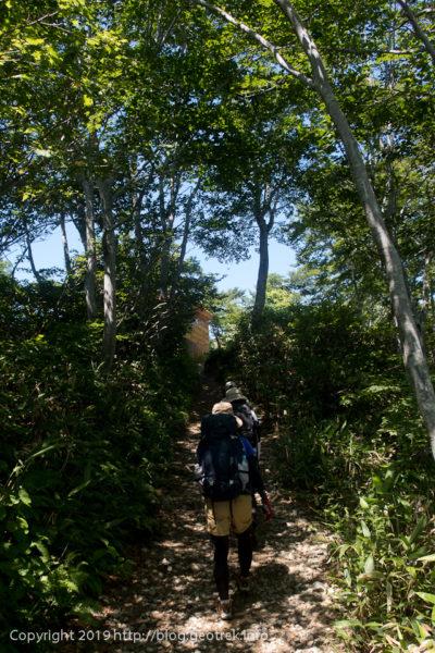 190803 熊穴沢避難小屋まで樹林の中