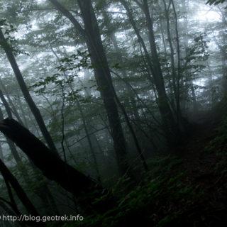 190901 風張峠付近。暗い