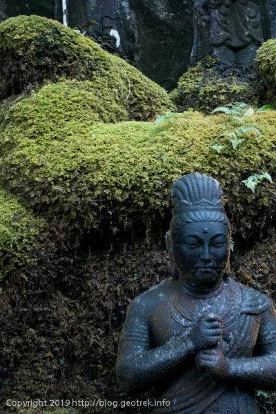 191022 仏像と苔
