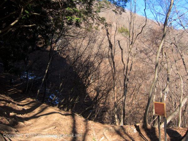 191229 登り尾根の道