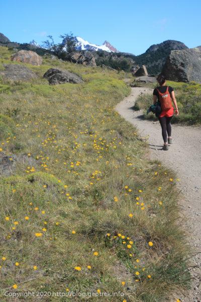 200118 フィツロイトレッキング・歩きやすい道が続く