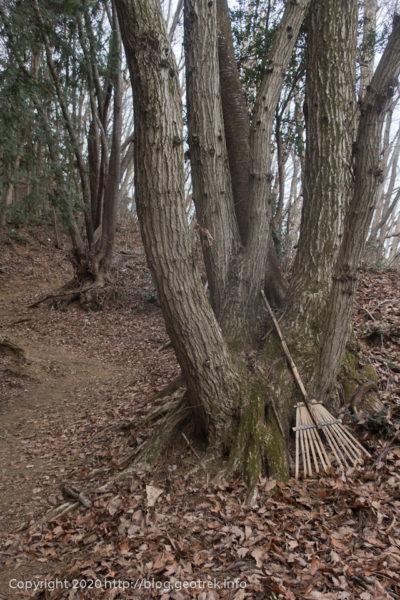 200215 登山道の竹ぼうき