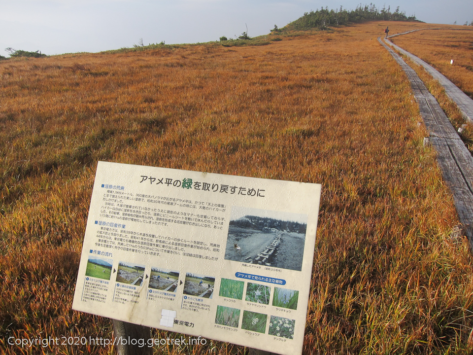 201003 アヤメ平の湿原の回復