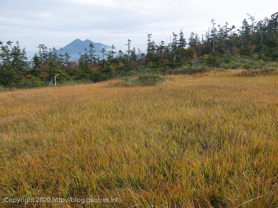 201003 白尾山の湿原