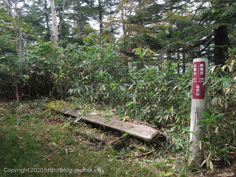 201003 皿伏山山頂