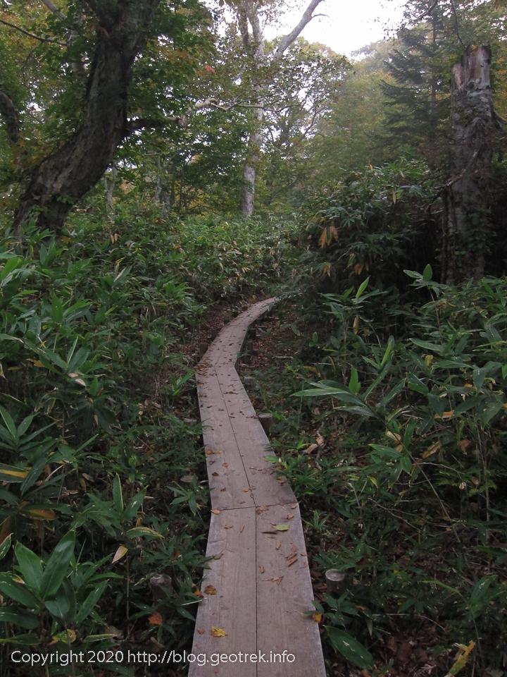 201004 横田代への道