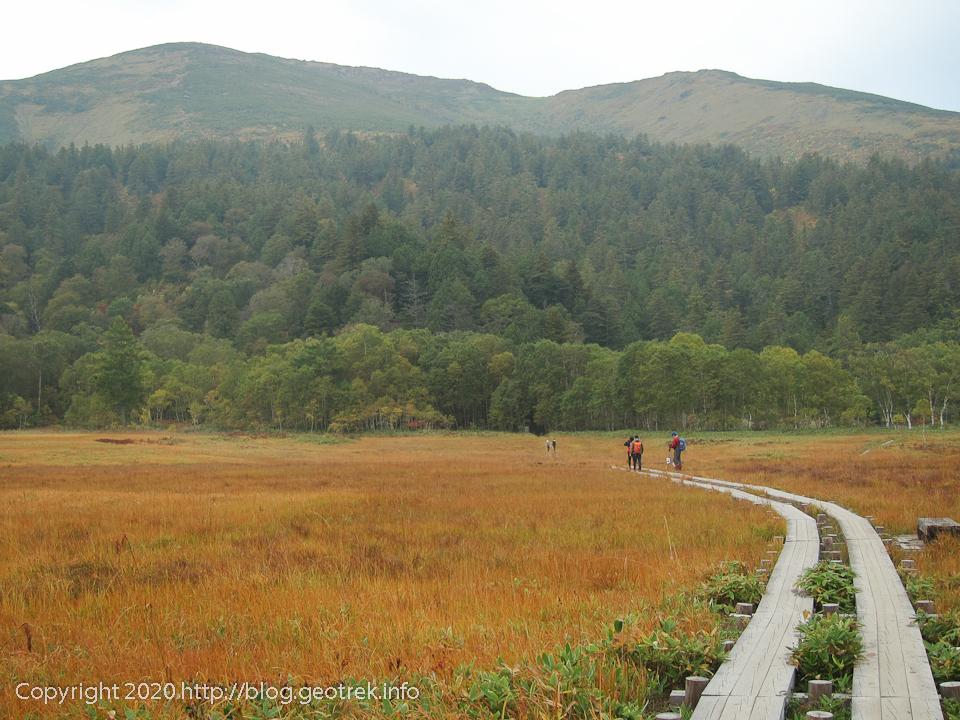 201004 山ノ鼻の湿原