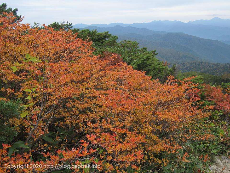 201004 至仏山中腹の紅葉