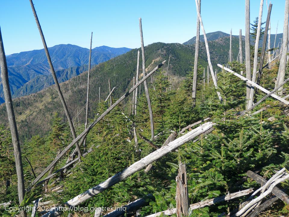 201025 雁坂嶺から破風山へ