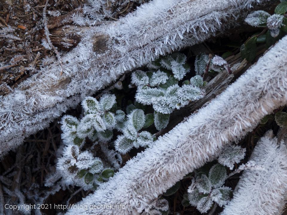 201031 三ッ岳山頂の霜