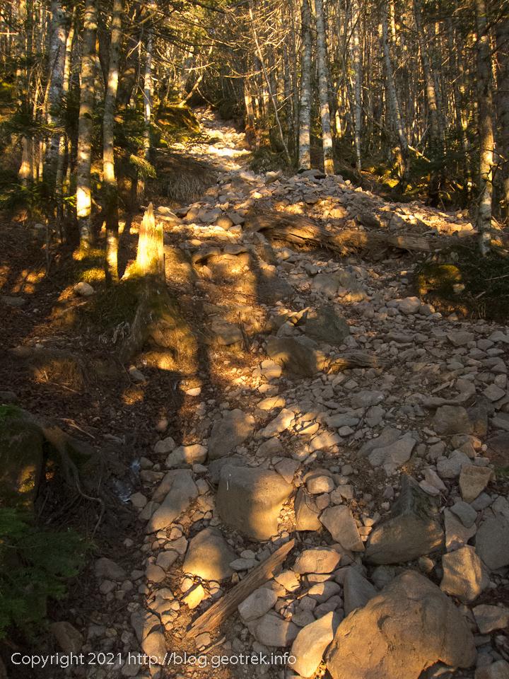 201031 北八ヶ岳・茶臼岳への登り
