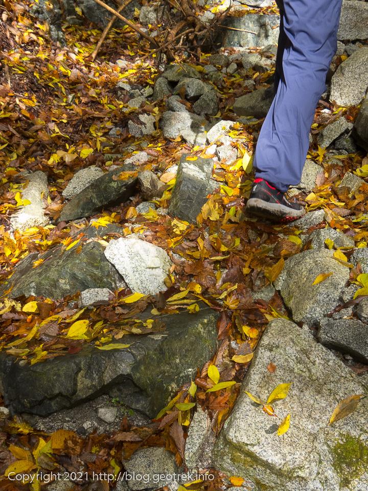 201108 雨池峠へ沢の中を歩く、落ち葉が輝く