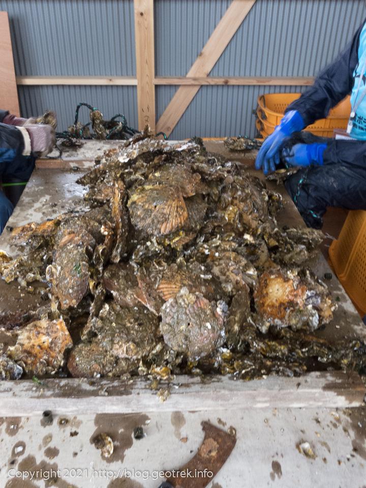唐桑の牡蠣漁師支援