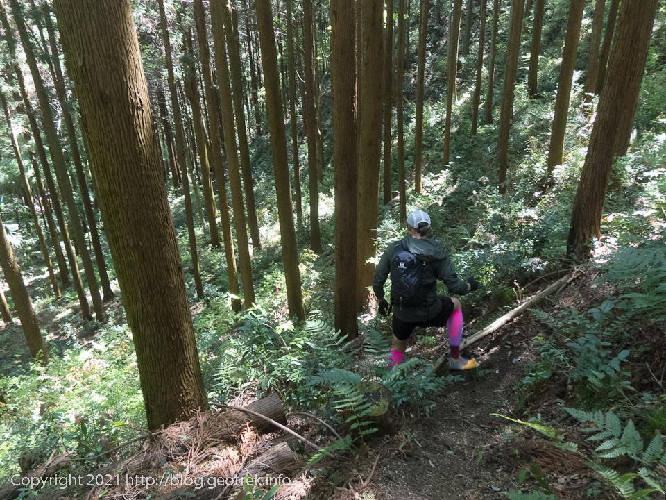 210418 荷田子峠から盆堀林道